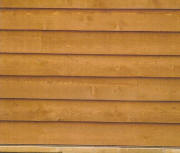 Cedar Bevel wood Siding